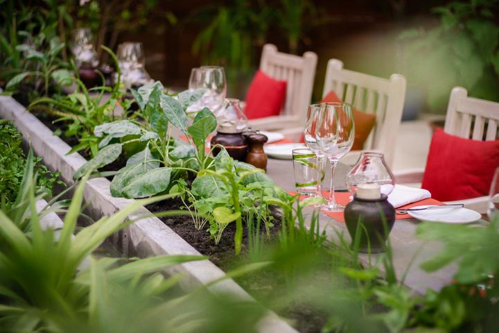 Kanuhura_Chefs_Herb_Garden_restaurant__26__720x480_72_RGB