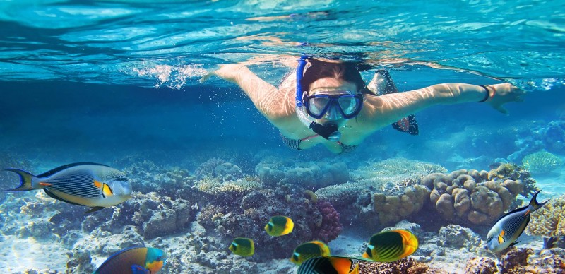 xrecreation-snorkeling02.jpg.pagespeed.ic.-h9zByBZcQ