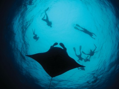 Four-Seasons-Maldives-Manta-web