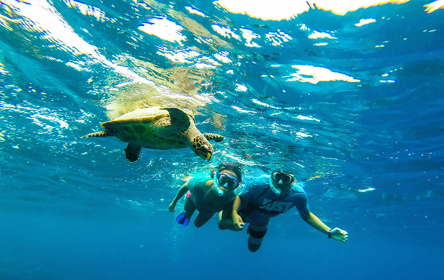 maldives-diving-snorkeling-31_web