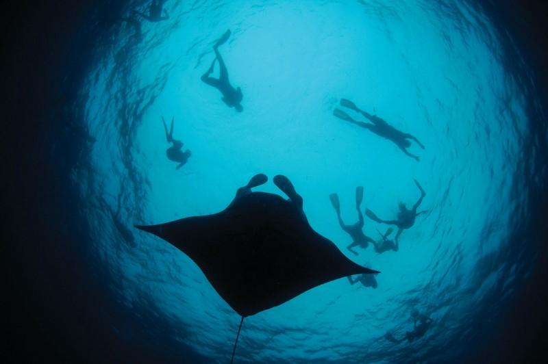 Four-Seasons-Maldives-Manta-web