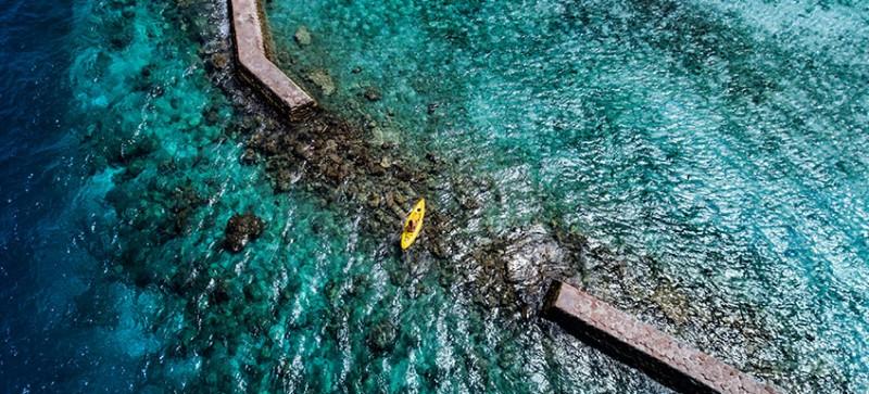 kuda_rah_kayak